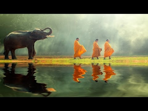 Tranquility: Meditation Sleep Music for deep sleep, rest and relaxation (Gentle hang-drum sounds)