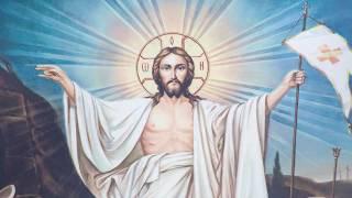 Поздравление с Пасхой митрополита Северодонецкого и Старобельского Никодима