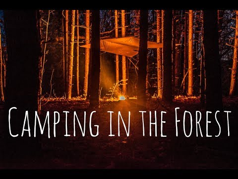 Overnight Alone in the Forest