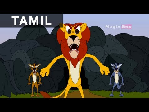 Willy Jackal Kids Animation Cartoon Story