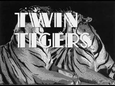 Miniatura del vídeo Twin Tigers - Everyday Remix