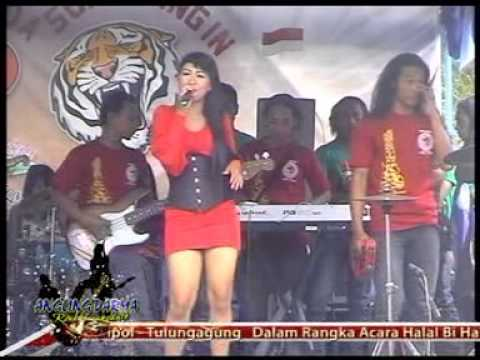 Angling Darma Rock Dangdut - Belahan Jiwa (LIVE Nyawangan -Sendang)