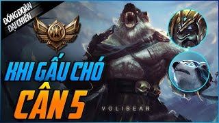 Khi Gấu Chó cân 5   Đồng đoàn đại chiến