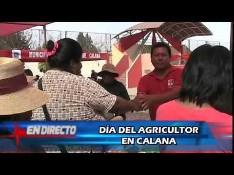 MUNICIPALIDAD DE CALANA RINDE HOMENAJE A LOS AGRICULTORES