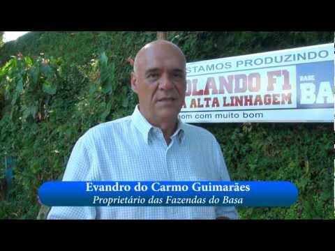 Entrevista com Evandro Guimarães: Girolando F1 Dupla Alta Linhagem