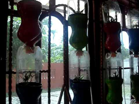 Windows Farm Hidroponik Randi Farm - YouTube