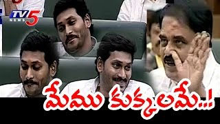 AP Assembly | YS Jagan Sarcastic Smile on Palle Ragunath Reddy Counters