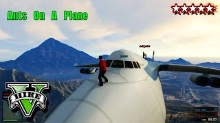 GTA Cargo Plane Funny Moments GTA 5 Ants On A Plane
