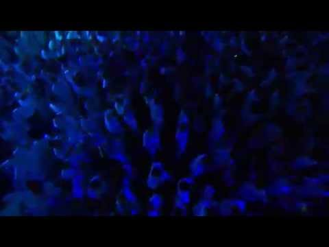 Fedde Le Grand & Joris Voorn Sensation Innerspace US 2012 NYC Liveset Recap Aftermovie Post Event