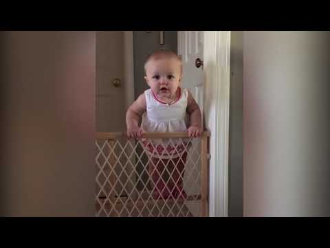 Top 10 Unbelieveable!  Smart Babies Escape From Gate  Funny Babies and Pets
