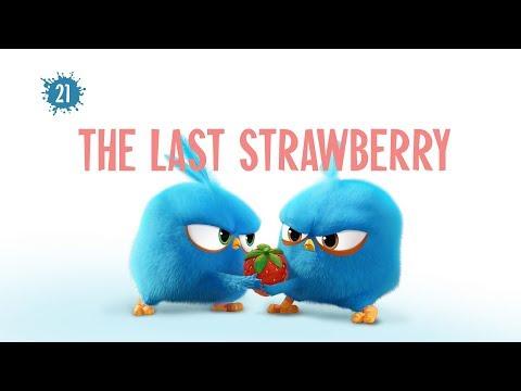 Angry Birds Blues - Posledná jahoda