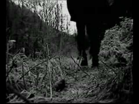 Nocturnal Depression - Host OFICIAL VIDEO [Depressive Black Metal], SONG: HOST ALBUM: Four Seasons to a Depression Lyrics: Tears are falling like sad autumn Leafs Time is wasted you've destroyed everything around us Sadness i...