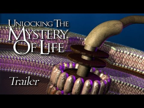 unlocking the mystery of life Documentary unlocking the mystery of life represents a unique programming opportunity for local stations its broadcast release coincides with the 50th anniversary of one of the greatest scientific see full summary.