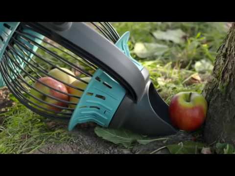 Приспособление для снятия яблок с дерева: 2 варианта