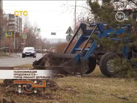 Газонофикация продолжается – город лишают деревьев