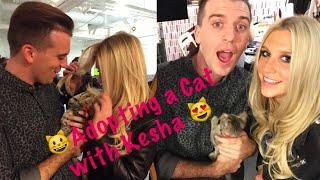 Adopting a Cat with Kesha | Jason's Big Gay Music Blog