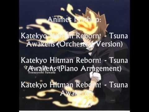 AnimeMashup - Katekyo Hitman Reborn! - Tsuna Awakens (Orchestral Version/Normal Version/ +1)