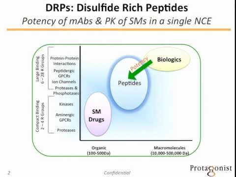 Protagonist Therapeutics presentation at Boulder Peptide Symposium