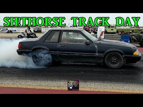 Racing The $6000 LS Turbo SH!THORSE  | New MSD 8733 2 Step