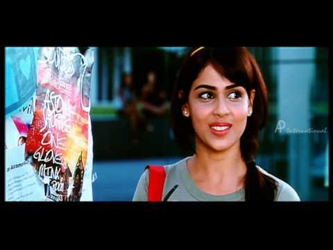 Ram Charan Teja paints Genelia D'Souza picture