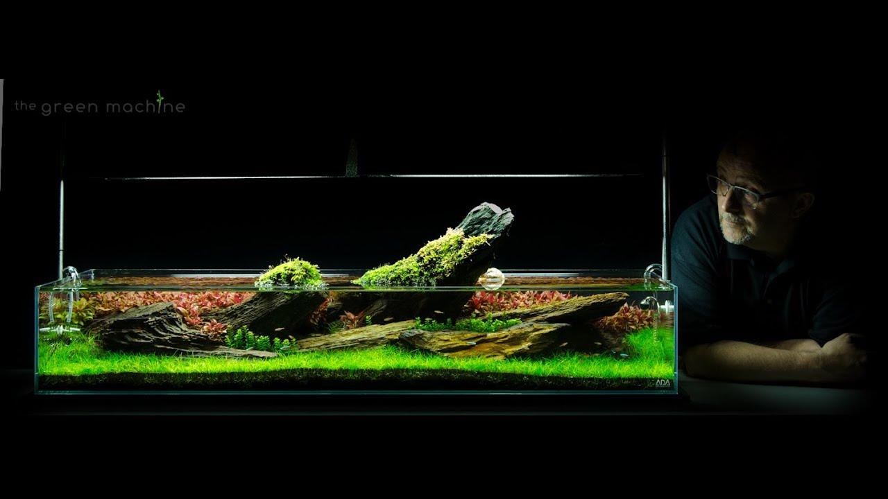 Crimson Sky Nature Aquarium Aquascape By James Findley Youtube