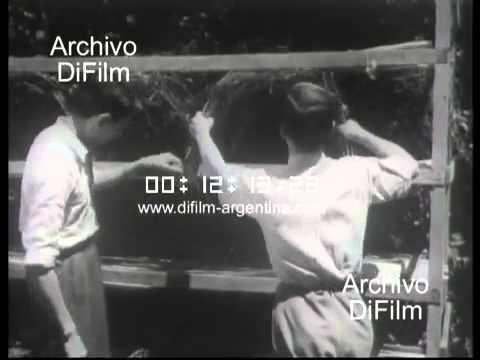 DiFilm - La Seda - Documental Universidad de Tucuman  (1948)