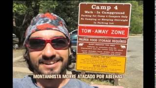 Montanhista morre atacado por abelhas em Andradas, no Sul de Minas