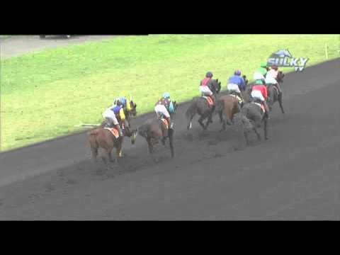 Vidéo de la course PMU PRIX MCM (PRIX DES CENTAURES)