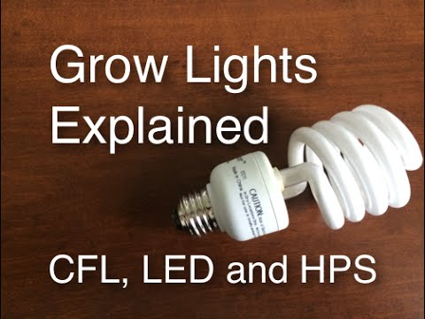 Grow Lights Explained CFL LED and HPS easy and cheap to efficient and expensive