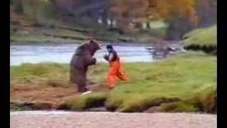 פרסומת - אדם נגד דוב מי ינצח ?אדם