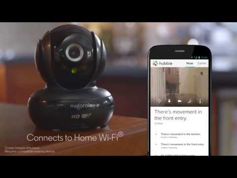 Motorola Scout 83 Wifi HD Pet Camera