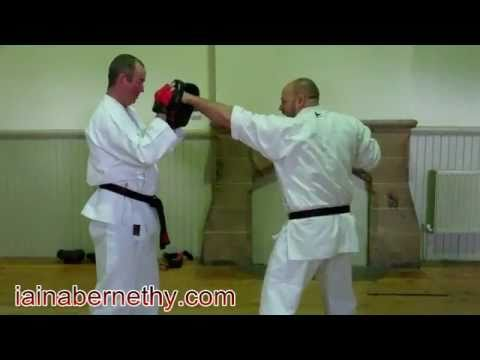Practical Kata Bunkai: Basic Impact Drill