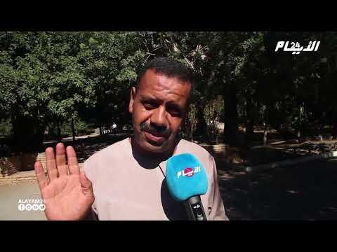 هذا ما قاله مغاربة عن تعفن لحم عيد الأضحى