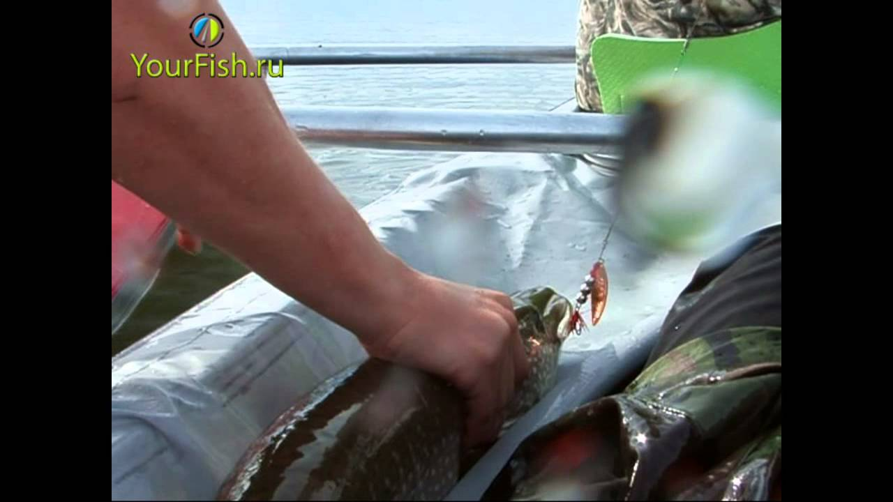видео рыбалка на среднем урале