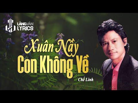 Xuân Này Con Không Về | Chế Linh | Official MV | Karaoke