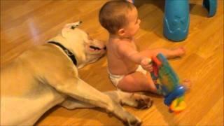 Bebê brinca com seu