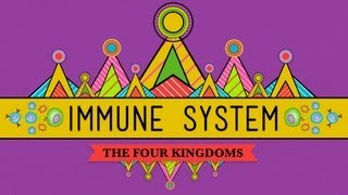 Crash Course Biology: Your Immune System