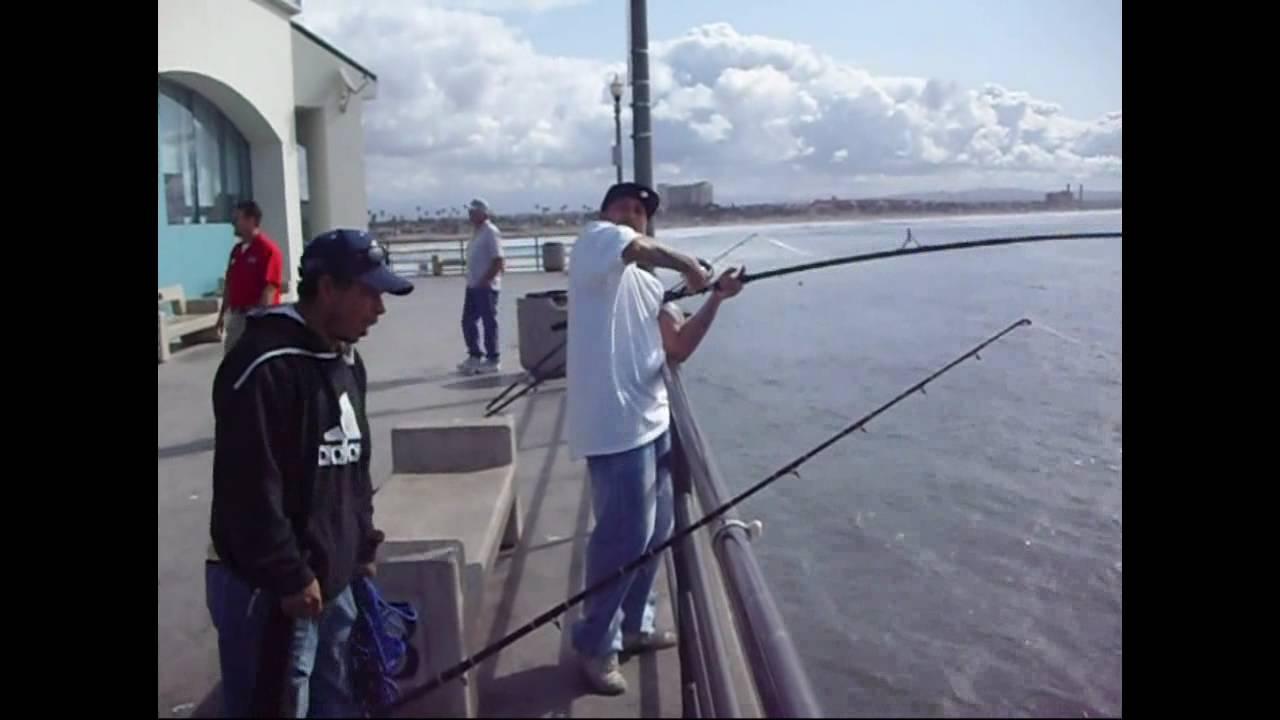 Huntington beach pier fishing youtube for Huntington beach pier fishing