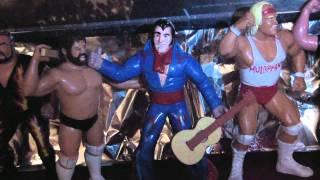 LJN WWF WWE Series 1 Through 6 Wrestling Superstars For