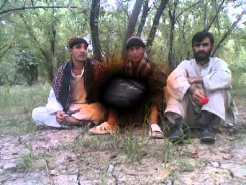 Akber Khan Safi  Zhob