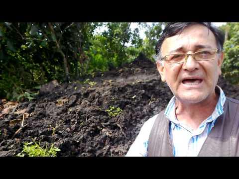 Dia 13, na Cratera de Colonia - Projeto 460 km por SP