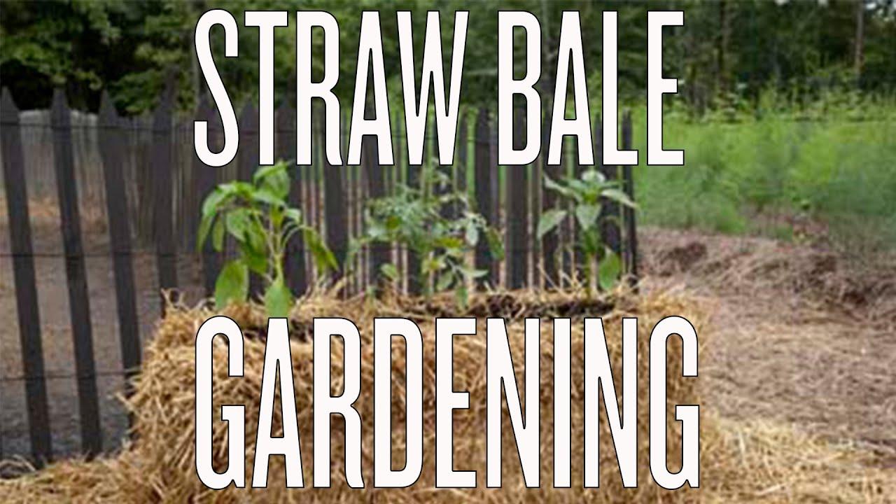 straw bale gardening instructions