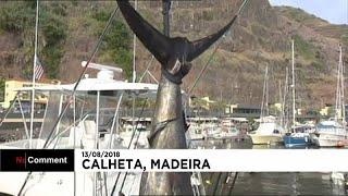 صياد أمريكي يصطاد سمكة وزنها 366 كيلوجرام