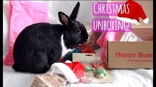 Unboxing our first Christmas Gift! | Happy Bunny Club