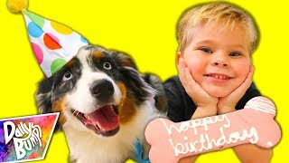 PUPPY'S FIRST BIRTHDAY SURPRISE PARTY! 🎉