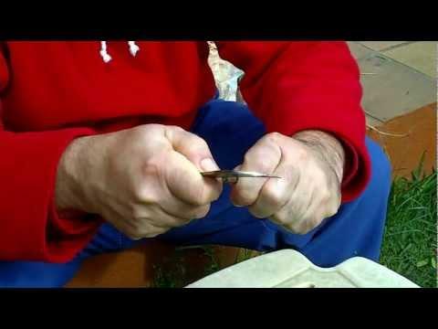 Tecnica del injerto de arboles a caballo 21-02-2013
