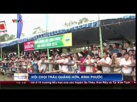 Lễ hội chọi trâu ở Hớn Quản-Bình Phước