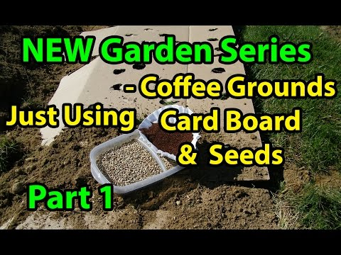 Coffee Grounds, Cardboard & Seeds - Gardening Series for Beginners - Soil Improvement 101 Pt 1