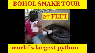 Biggest Snake In The World, Bohol, Philippines