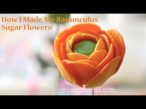 Ranunculus Gumpaste Tutorial http://shelf3d.com/Search/gumpaste%2Bflowers%2BPlayListIDPL6D8A94CB024030F6